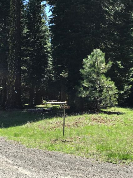 3255 Keno Access Rd, Ashland, OR 97520