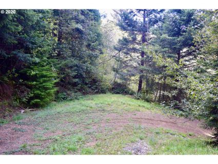 Greggs Creek RD Acreage, Ophir, OR 97464, #20041144